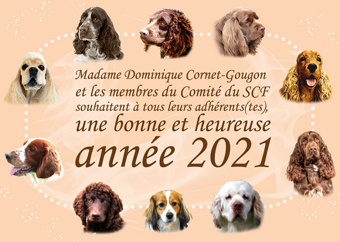 voeux 2021 3